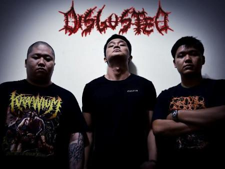 Disgusted - Discography (2007 - 2010)
