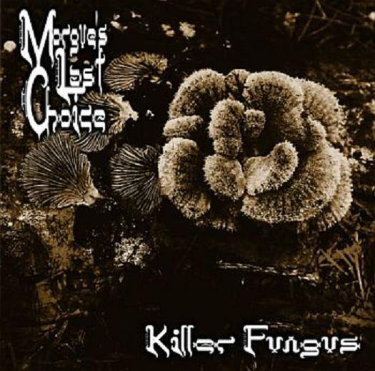 Morgue's Last Choice - Killer Fungus