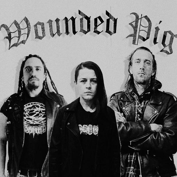 Wounded Pig - Discography (2014-2017)