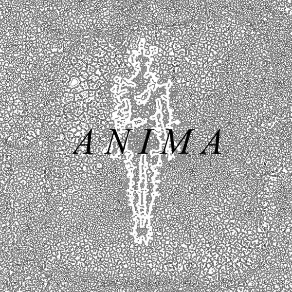 In This Temple - Anima (EP)