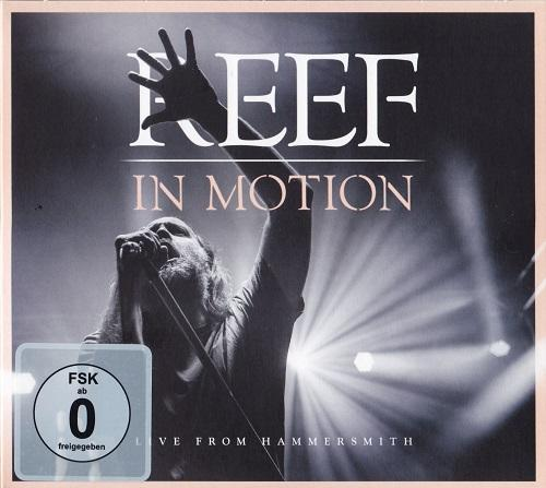 Reef - In Motion : Live From Hammersmith (Live) (Video)
