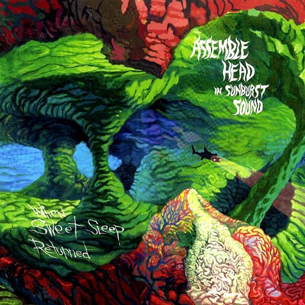 Assemble Head In Sunburst Sound - Discography (2005 - 2012)