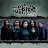 Blackthorn - Discography  (2009-2015) (Lossless)