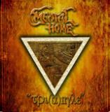 Mental Home - Triangle (Single)