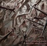 Exsanguinate - Revel In Anthropophagic Breeding Morphogenesis