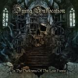 Dying Suffocation - In The Darkness Of The Lost Forest (Lossless)