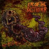 Eye Of The Destroyer - Discography