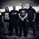 Volition - Discography (2008 - 2015)