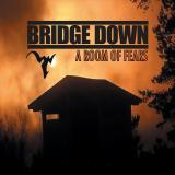 Bridge Down - A Room Of Fears