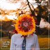 Birthright - Let Me Down Easy