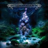 Omnium Gatherum - The Burning Cold (Lossless)