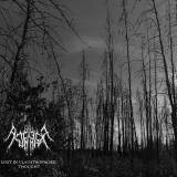 Ancient Tundra - Discography (2016 - 2017)