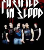 Purified In Blood - Discography (2004-2012)