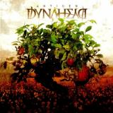 Dynahead - Discography (2008-2014)