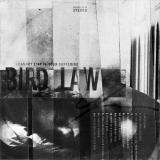 Bird Law - I Cannot Stay In Your Suffering