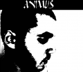 Animus - Discography
