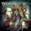 Pathology - Pathology (Lossless)